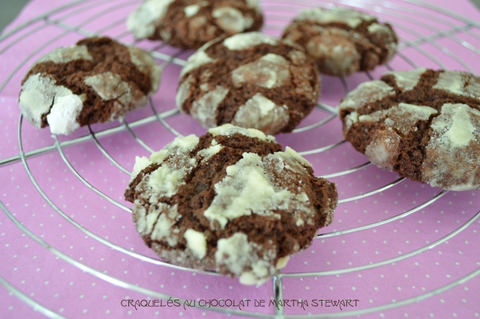 Craquelés au chocolat de Martha Stewart2